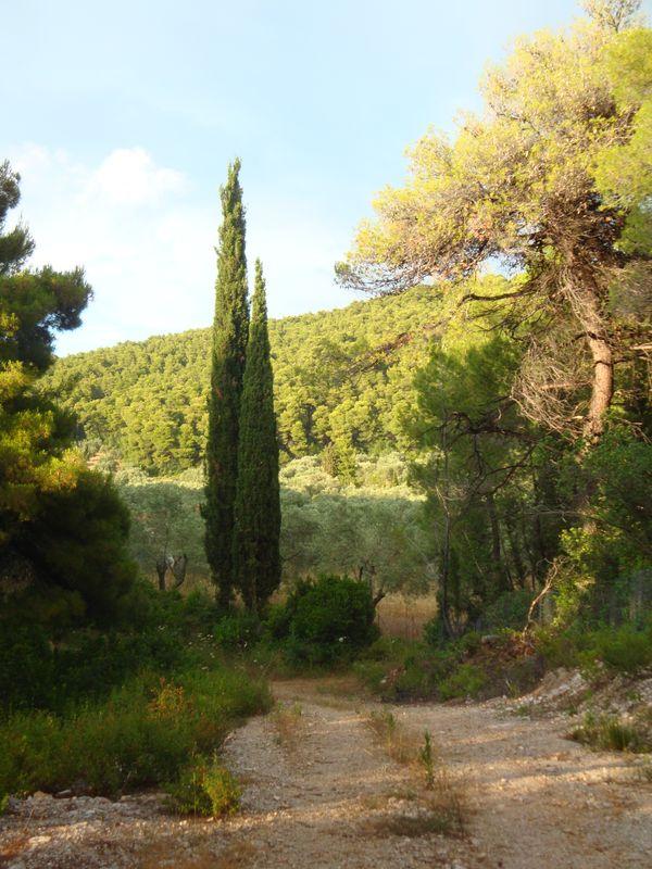 041. На прогулке в окрестностях Панормоса (Πάνορμος) -