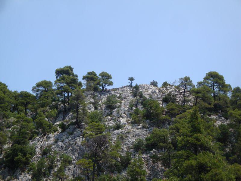 065. Где-то там смотровая башня горы Дельфи - Δέλφη