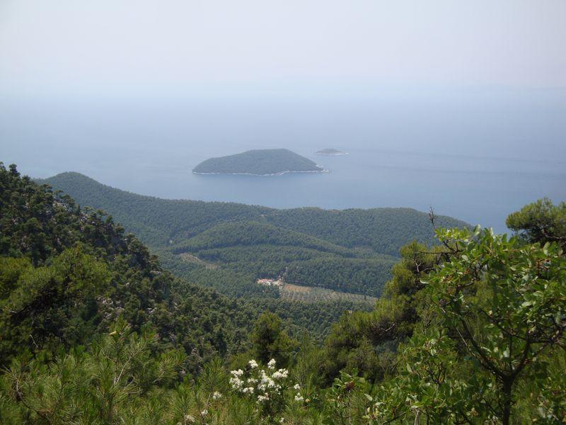 071. Захватывающий дух вид - С вершины горы Дельфи (Δέλφη)