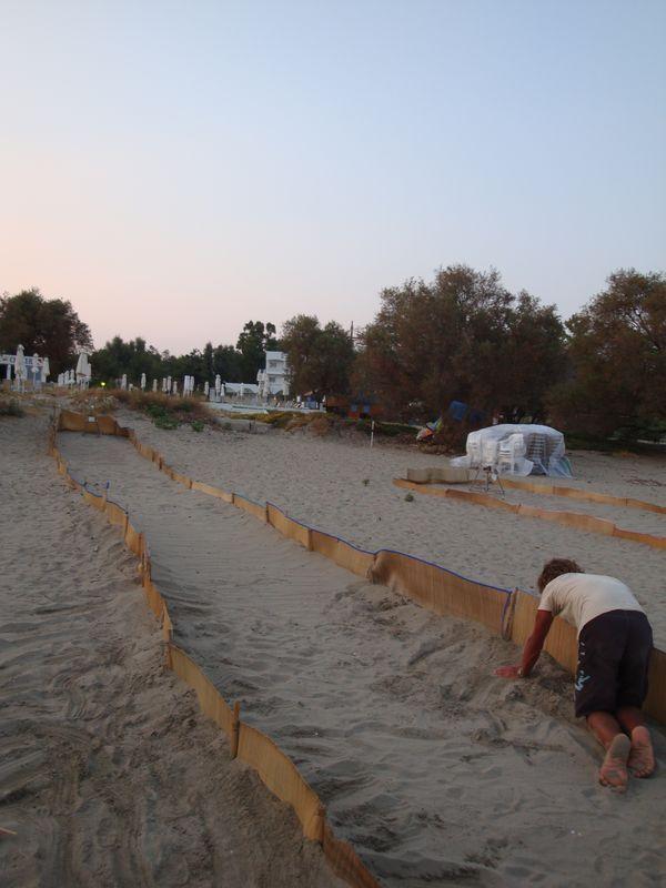 """12. Черепашья дорожка - Работники """"Морского заповедника"""" на пляже Лаганас ограждают таким образом новорожденных черепашат, указывая им путь к морю. Эти меры необходимы, так как на пляже Лаганас днем бывает многолюдно. Пляж Каламаки чистый и немноголюдный находится рядом. Там по-настоящему много черепашьих кладок."""