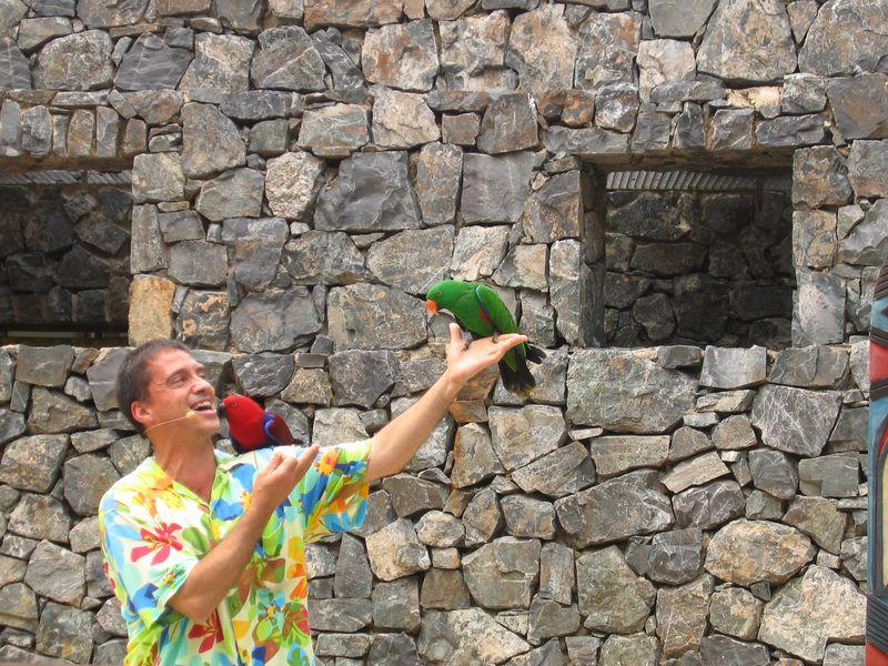 022. Два попугая -